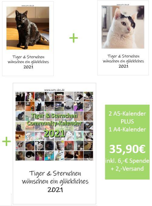 Cover 2xA5 + Community Kalender 2021 inkl Preis