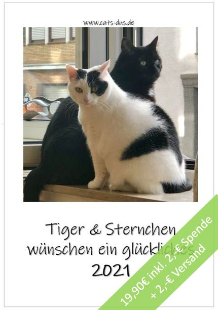 Cover Tiger+Sternchen 2021 inkl Preis
